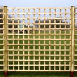 Trellis Dip Treated Fence Panel 1828mm x 305mm