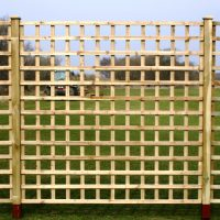 Trellis Dip Treated Fence Panel 1828mm x 305mm